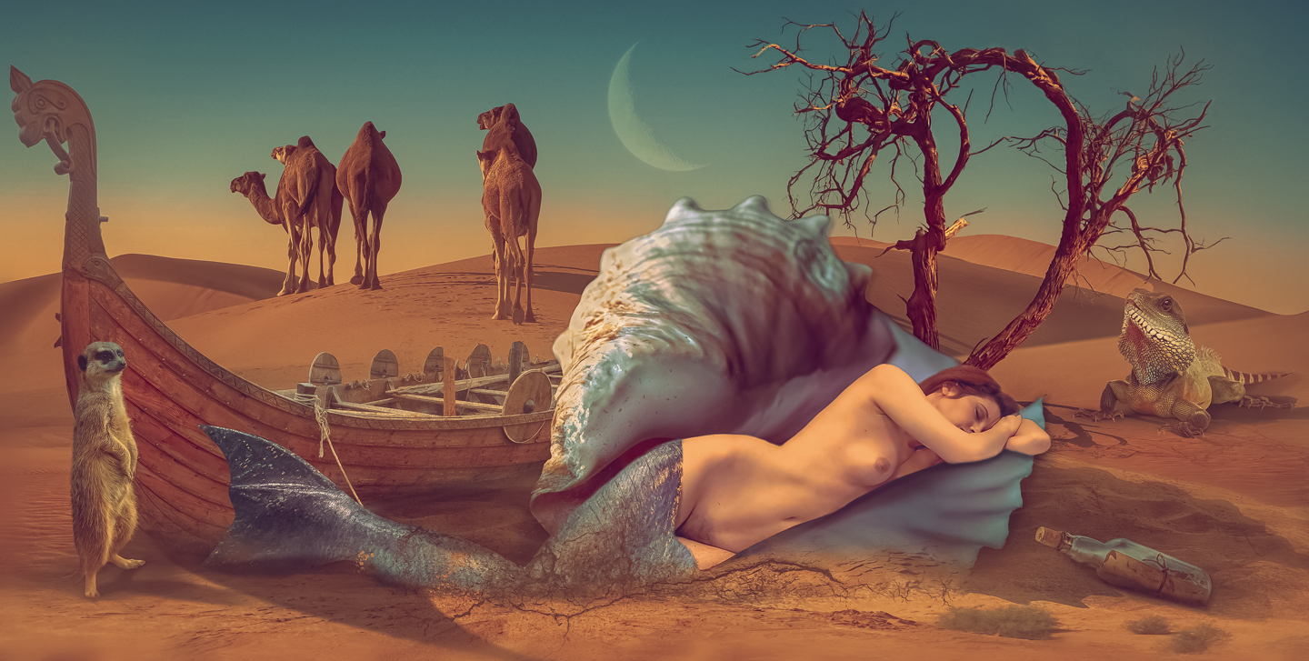 Mermaid in desert